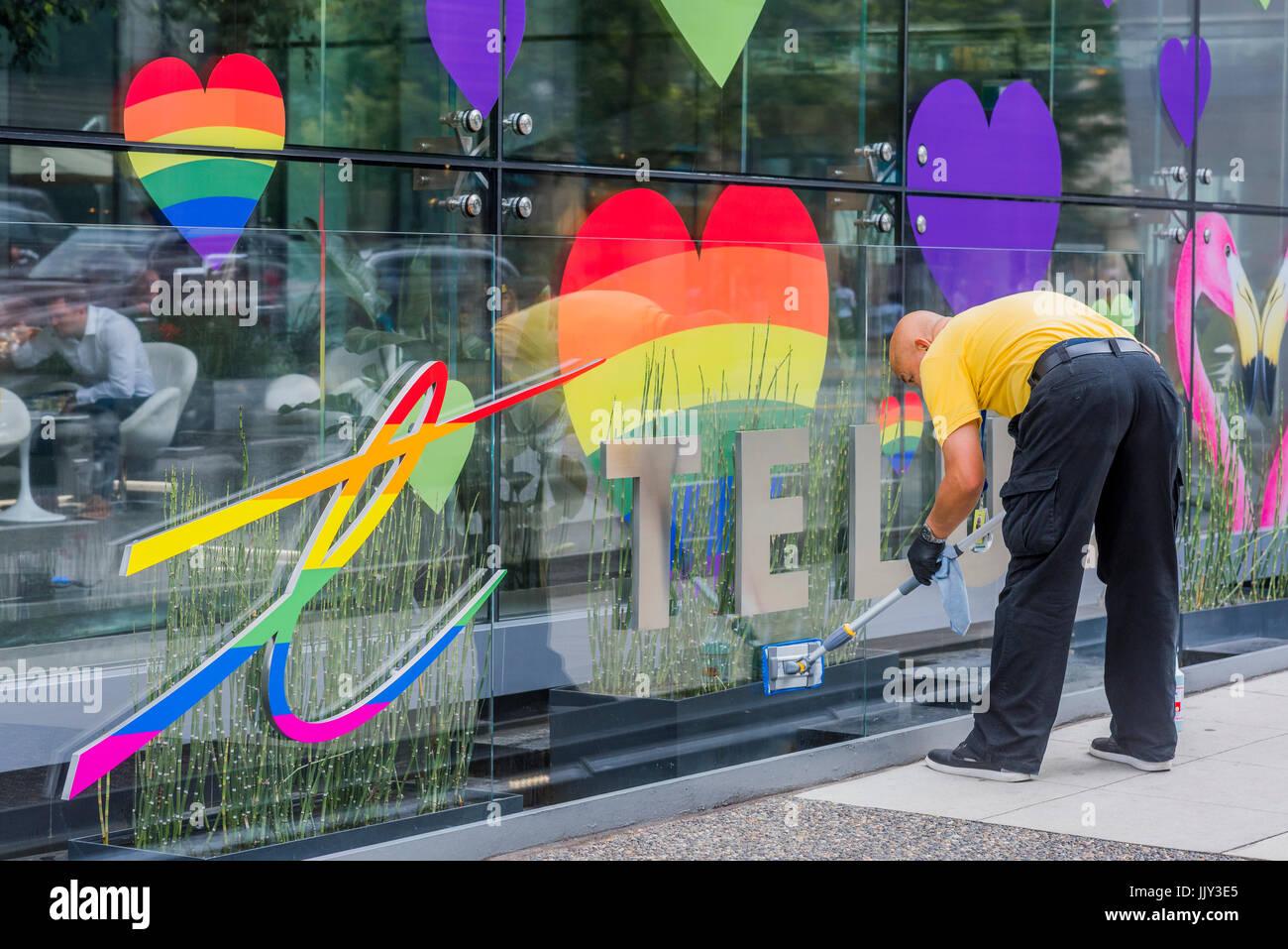 Limpiador De Cristales Gay