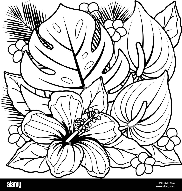 Plantas Tropicales Y Flores De Hibisco Libro Para Colorear De