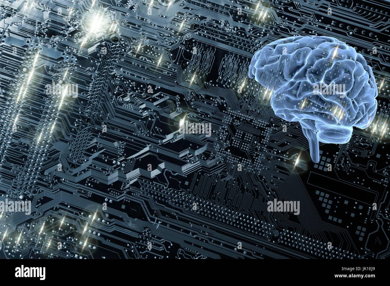 Cerebro Humano contra una placa de circuitos de computadora, inteligencia artificial y comunicación. Foto de stock