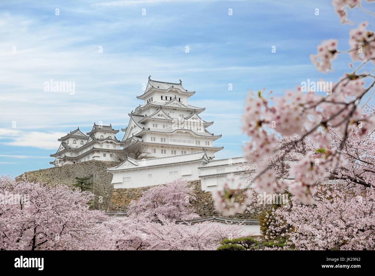 Flores de cerezo en flor y el castillo de Himeji en Himeji, en la provincia de Hyogo, Japón Imagen De Stock