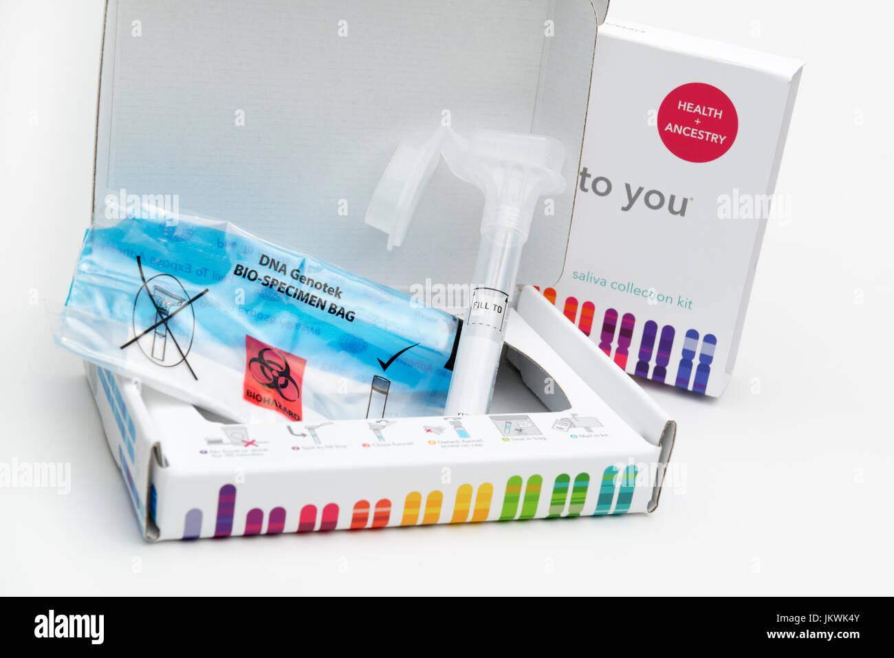Consumir casa recogiendo saliva kit para las pruebas genéticas de la ancestralidad y genes de salud Imagen De Stock