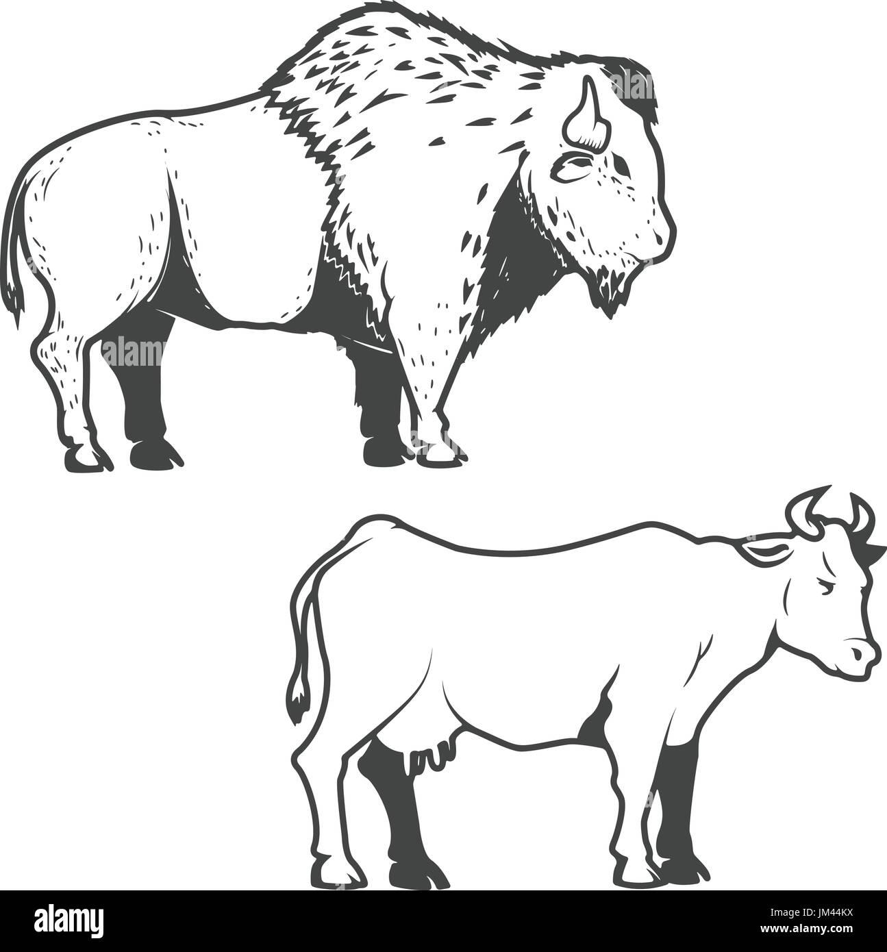 Black White Cartoon Illustration Ox Imágenes De Stock & Black White ...