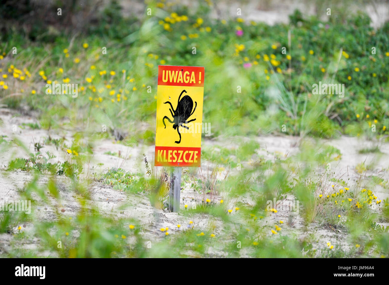Señal de advertencia de graduación en Lacha Mewia Swibno Reserva Natural en Gdansk, Polonia el 23 de julio de 2017 Foto de stock