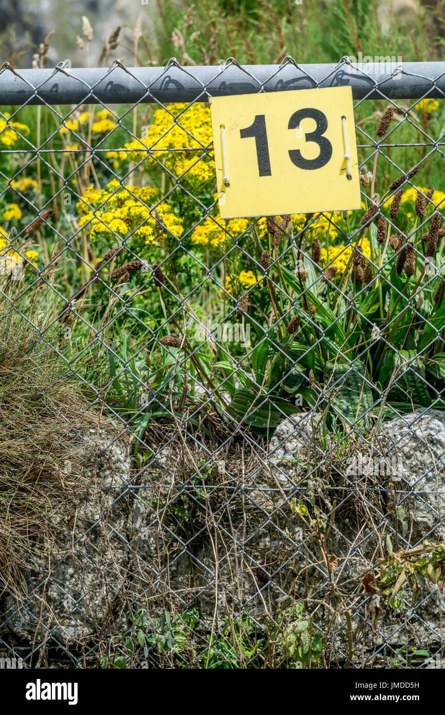 Signo amarillo Número 13 - un número de mala suerte para algunos, y también un panadero docena. Imagen De Stock