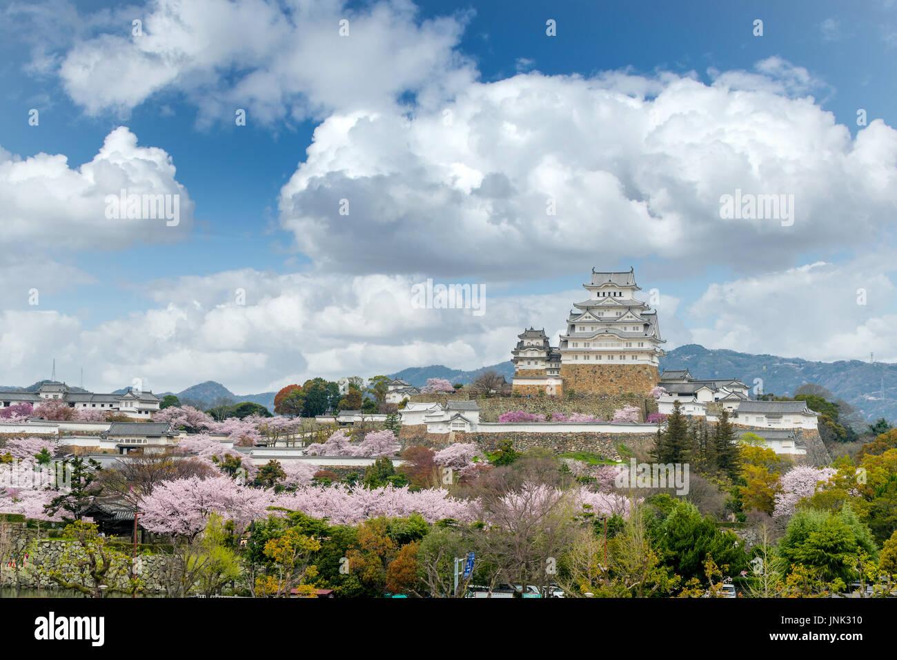 Temporada de flores de cerezo en flor con el castillo de Himeji en la ciudad de Himeji, en la provincia de Hyogo, cerca de Osaka, Japón Imagen De Stock