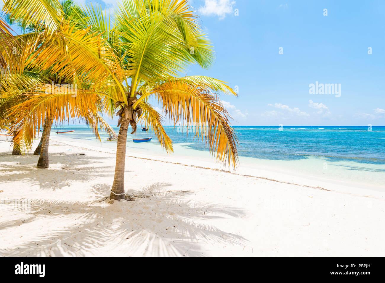 Mano Juan, Isla Saona, East National Park (Parque Nacional del Este), en la República Dominicana, Mar Caribe. Imagen De Stock