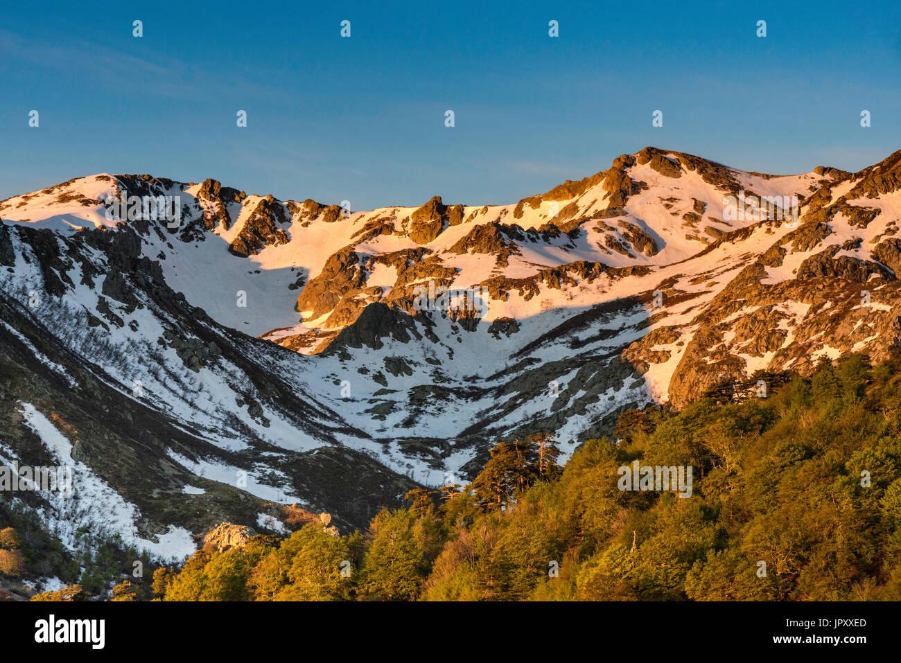 Monte Renoso macizo, al amanecer, GR 20 Sendero cerca Capannelle cabaña de montaña, Haute-Corse departamento, Córcega, Francia Imagen De Stock