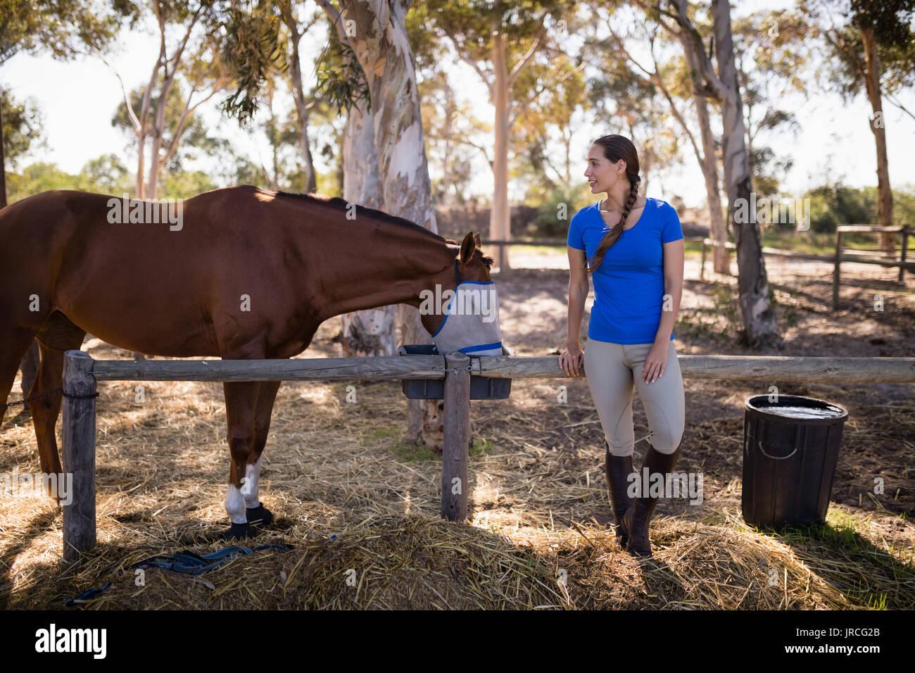 La longitud completa de la mujer de pie a caballo en campo en paddock Foto de stock