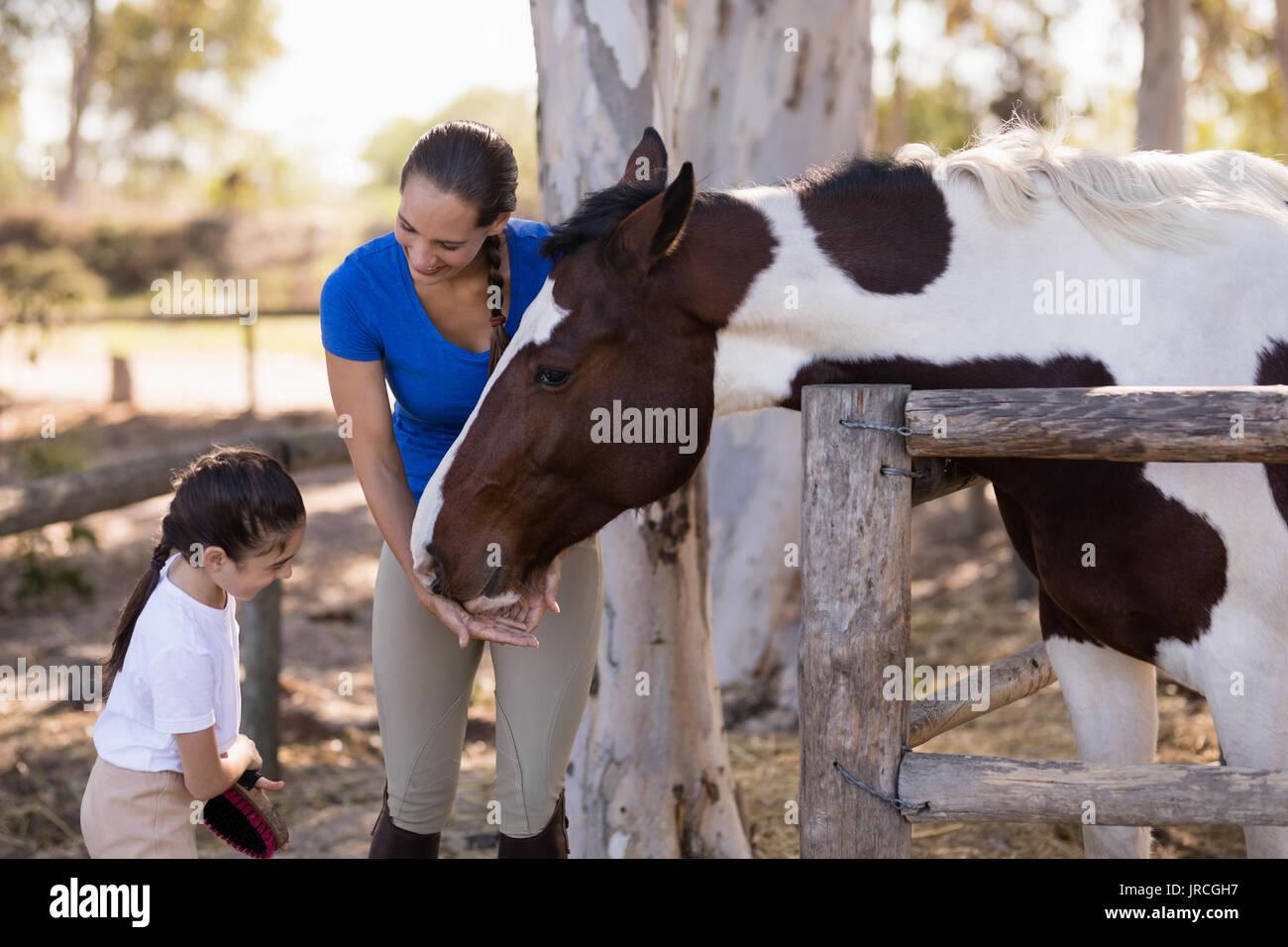 Mujer ayudando a su hermana para limpieza de caballo mientras está parado en el paddock Foto de stock