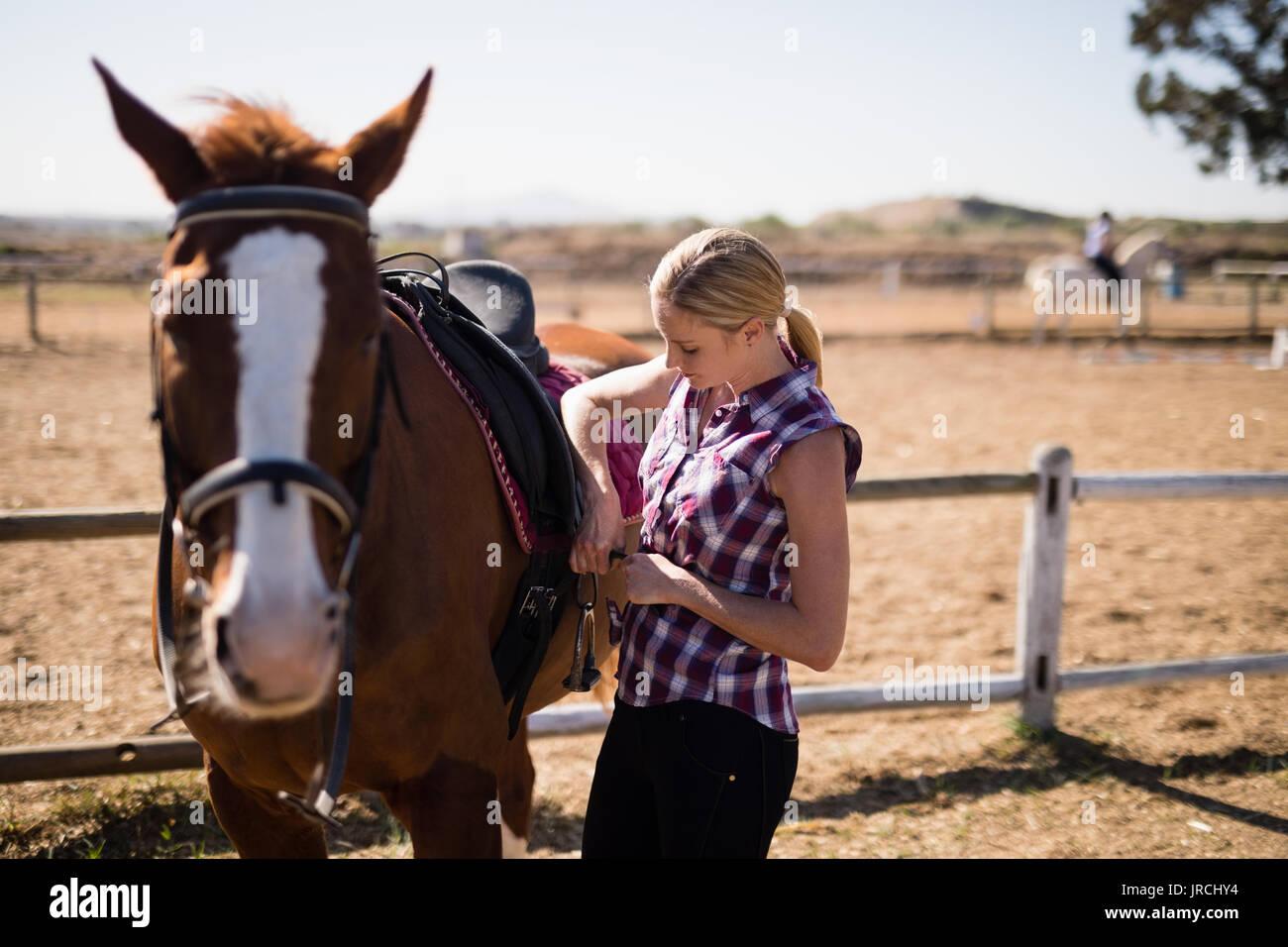 Mujer joven caballete de sujeción caballo estando de pie en el campo durante el día soleado Foto de stock