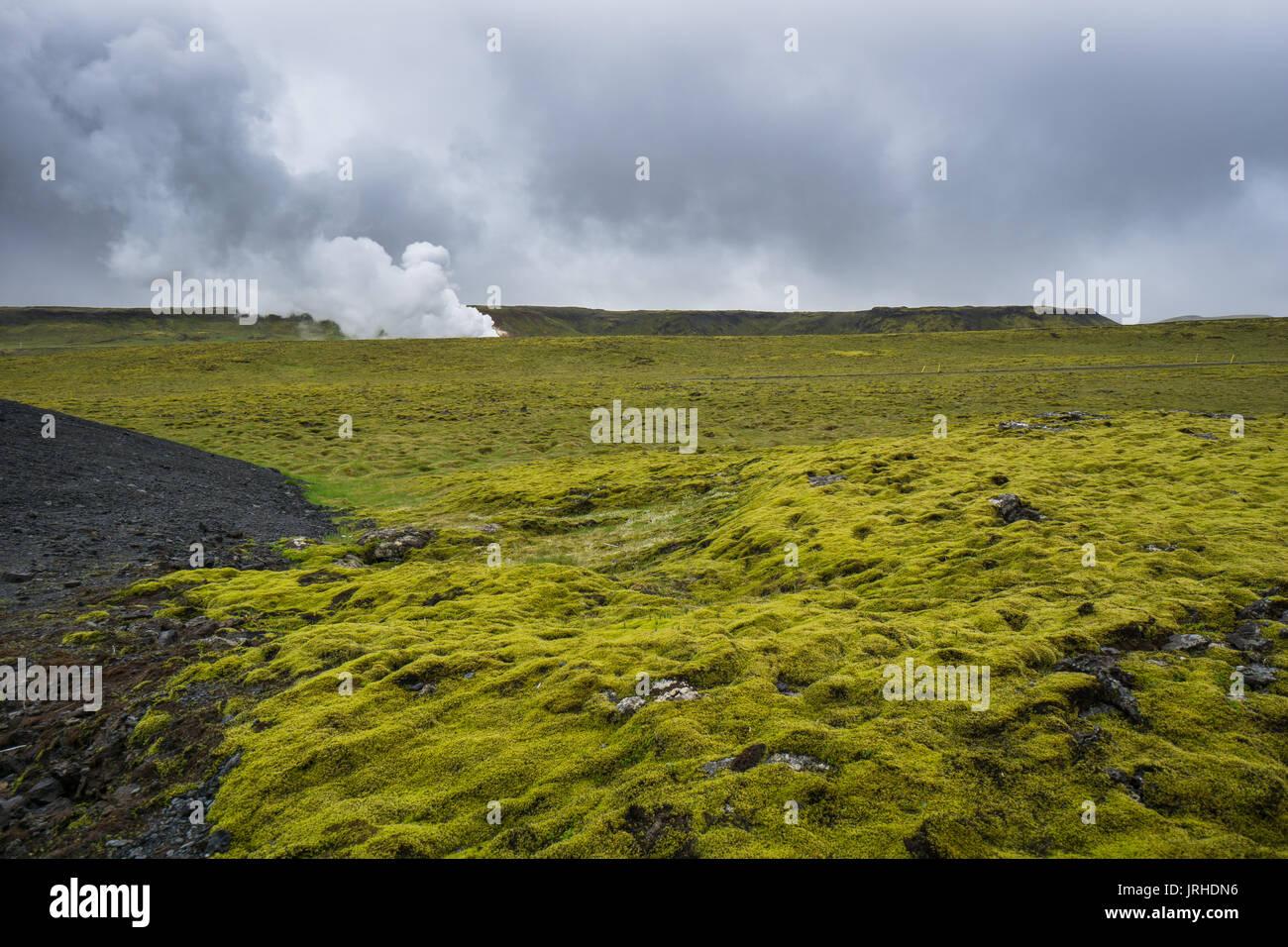 Islandia - cubiertas de musgo verde campo de lava con energía geotérmica Imagen De Stock