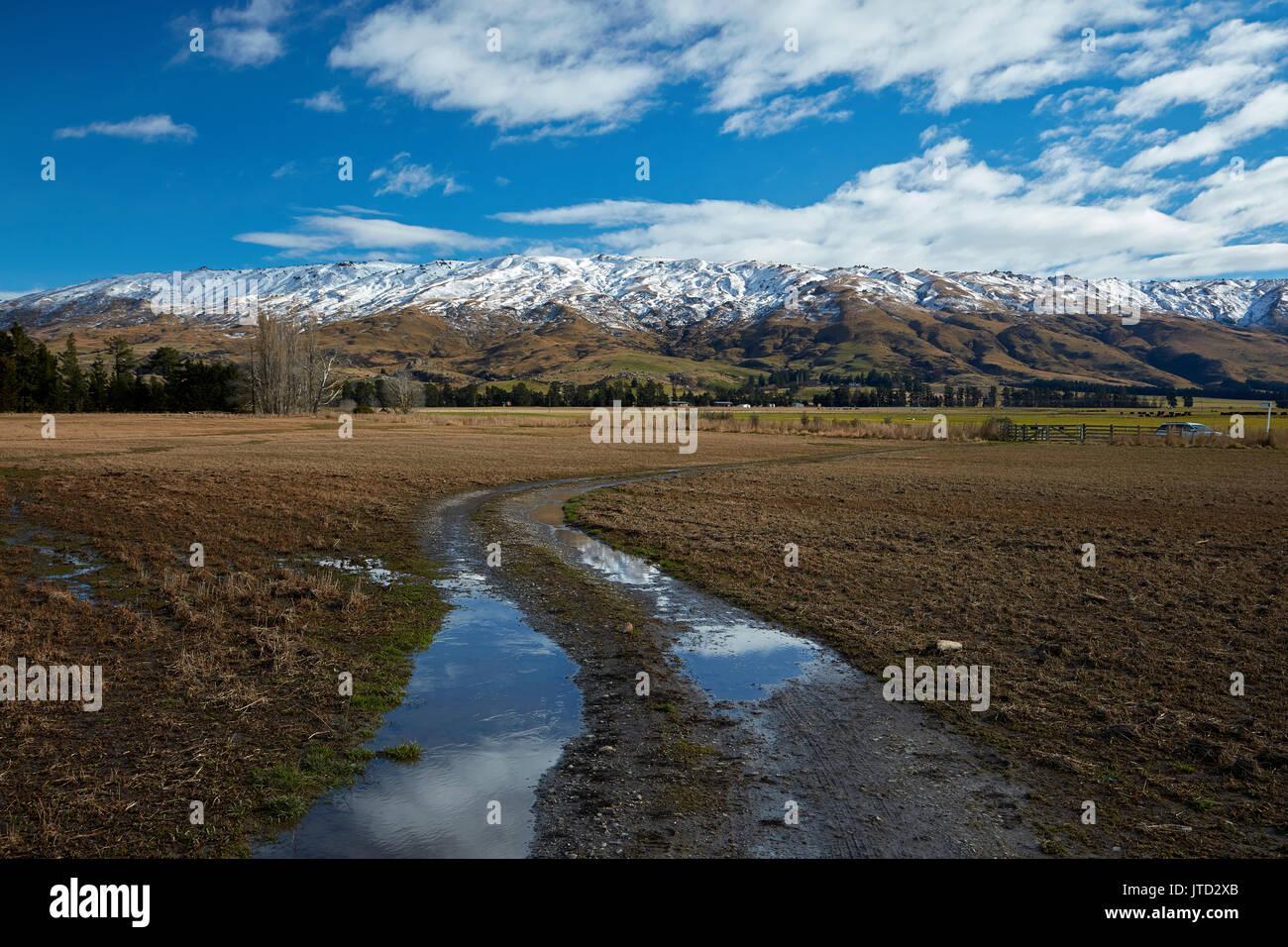 Pista agrícola y roca y Pilar Gama, Sutton, cerca de Middlemarch, Strath Taieri, Otago, Isla del Sur, Nueva Zelanda Imagen De Stock