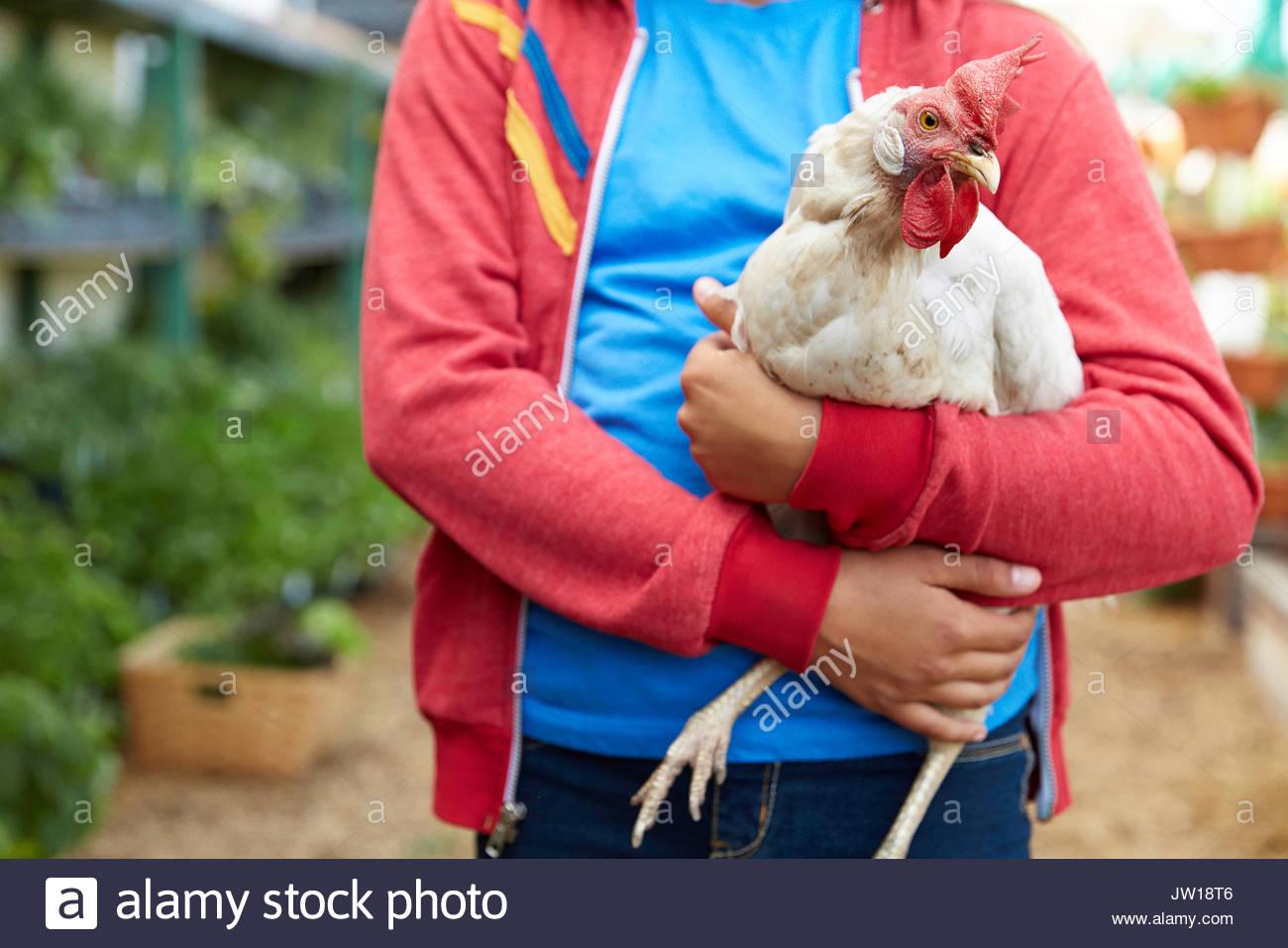 Cerrar Chica sujetando el pollo Imagen De Stock