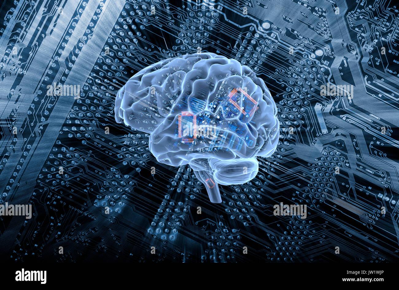 Cerebro Humano comunicándose con una motherboard computadoras, inteligencia artificial Imagen De Stock