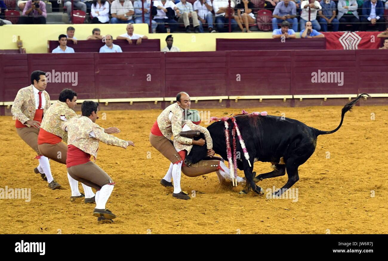 Bullfighting In Portugal Imágenes De Stock   Bullfighting In ... 68aa6fc7264