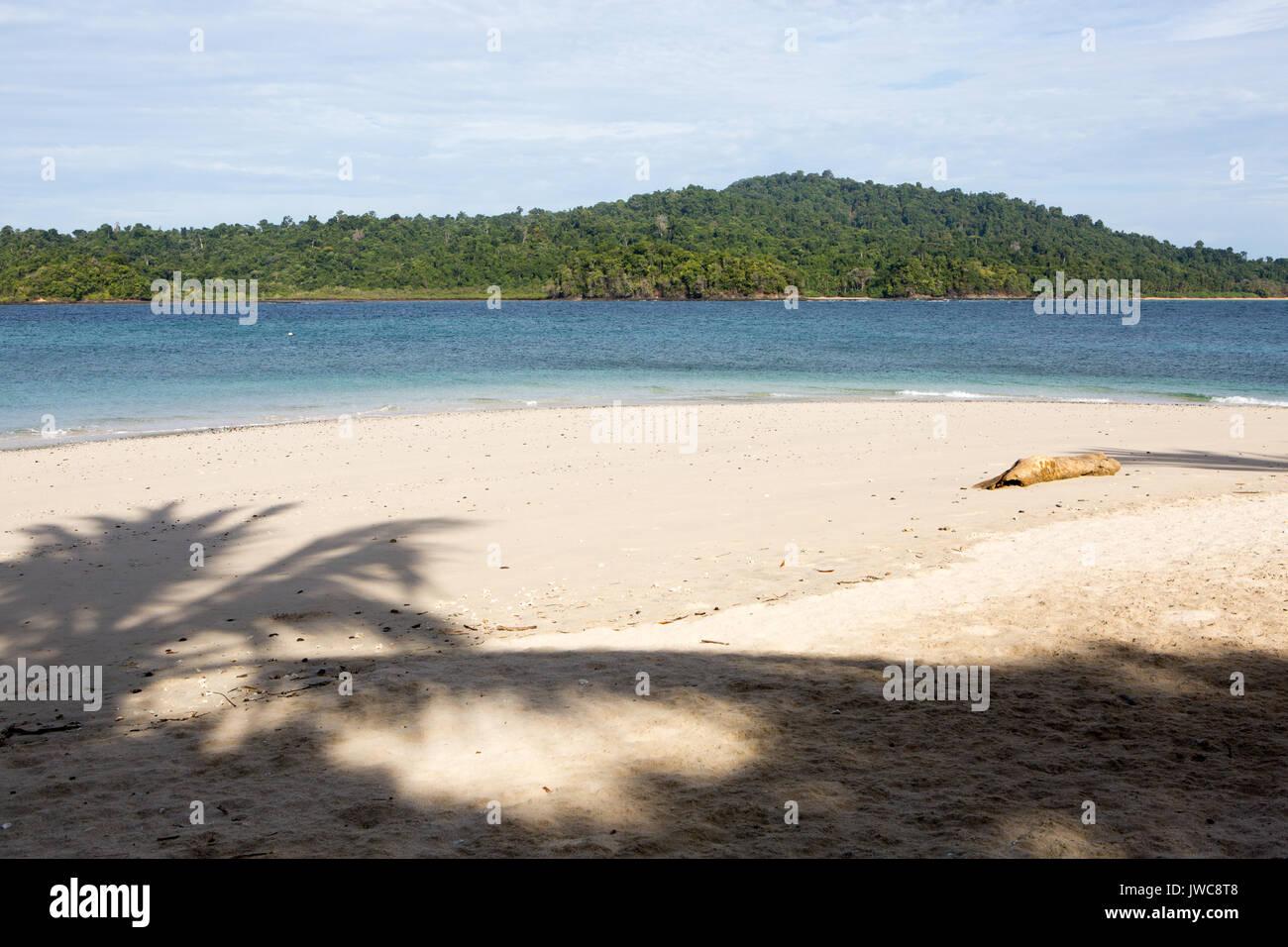 La sombra de un cocotero en la orilla arenosa de la pequeña isla Granito de Oro. Imagen De Stock
