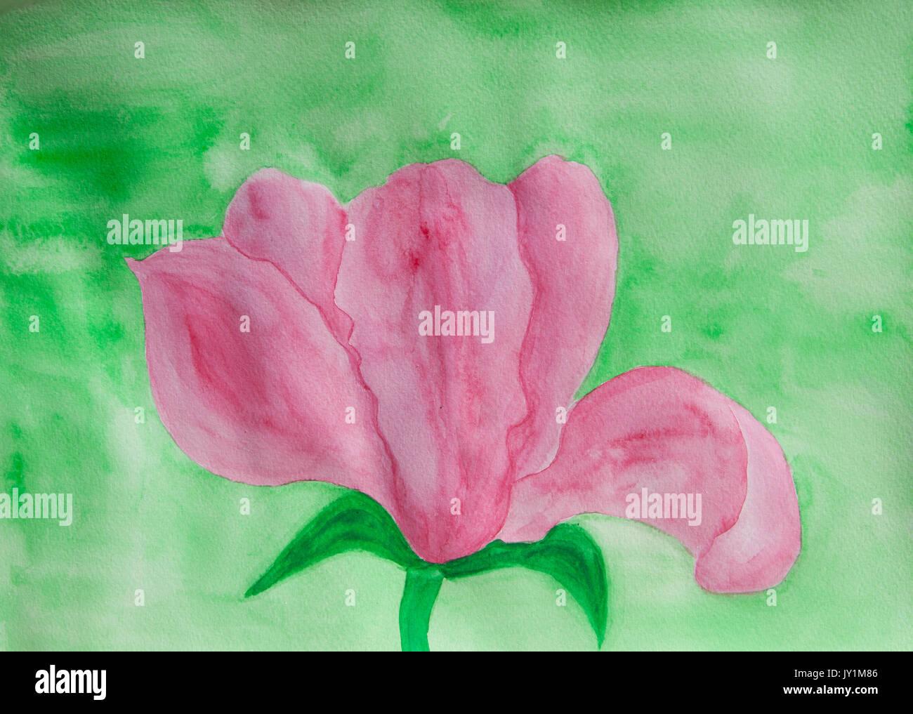 Uno de los grandes de color rosa magnoliaflower sobre fondo verde, ilustración pintura acuarela. Imagen De Stock