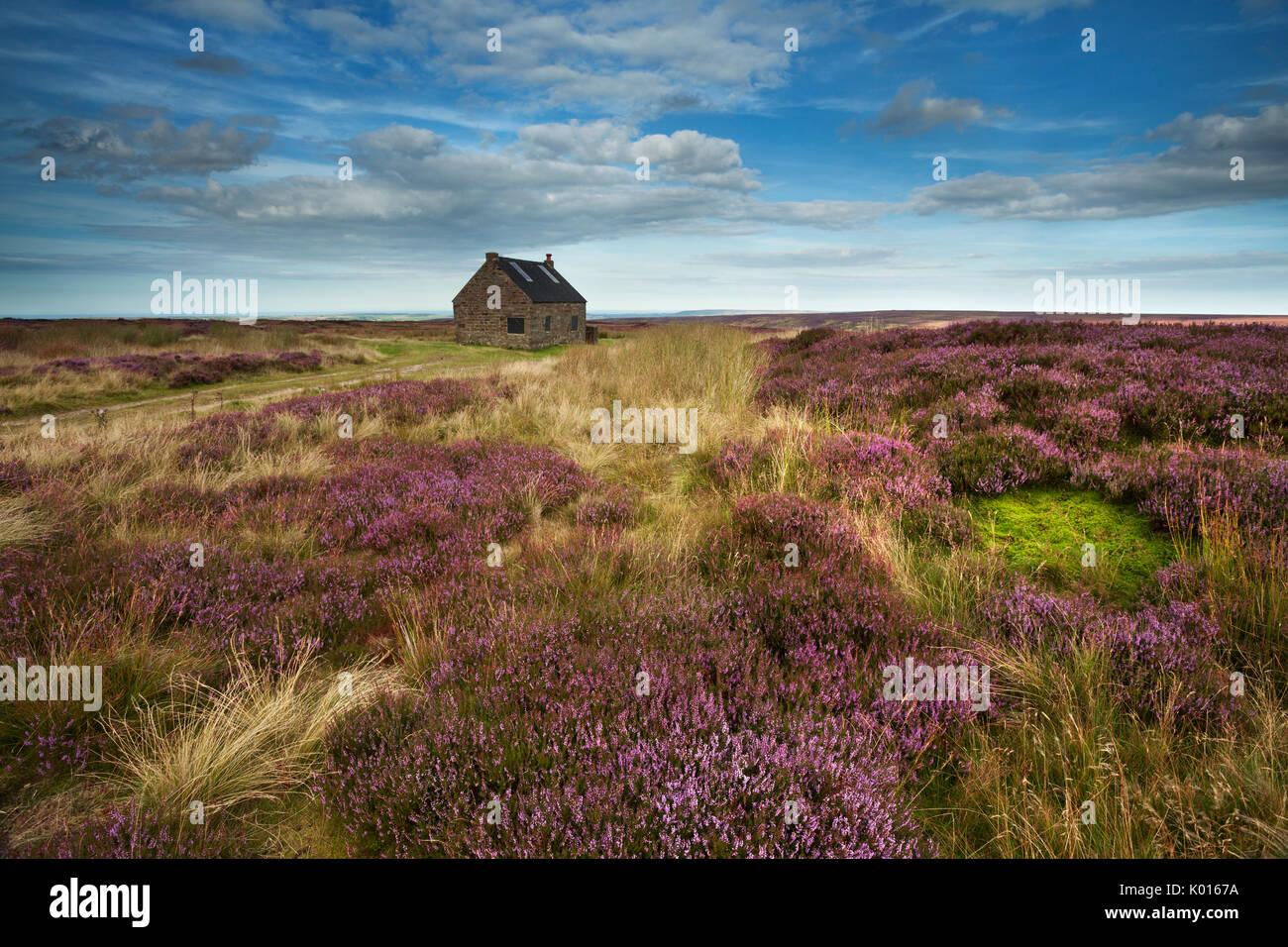 A través de casa, Shooting Lodge arriba Fryupdale en el North York Moros. Imagen De Stock