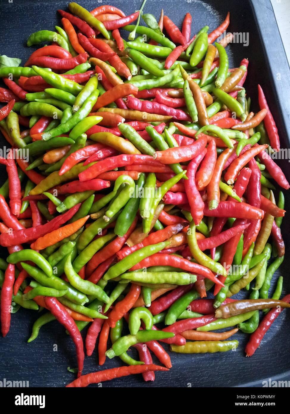El fruto de la bird's eye chili es utilizada popularmente como especia en la cocina del sudeste asiático. Imagen De Stock