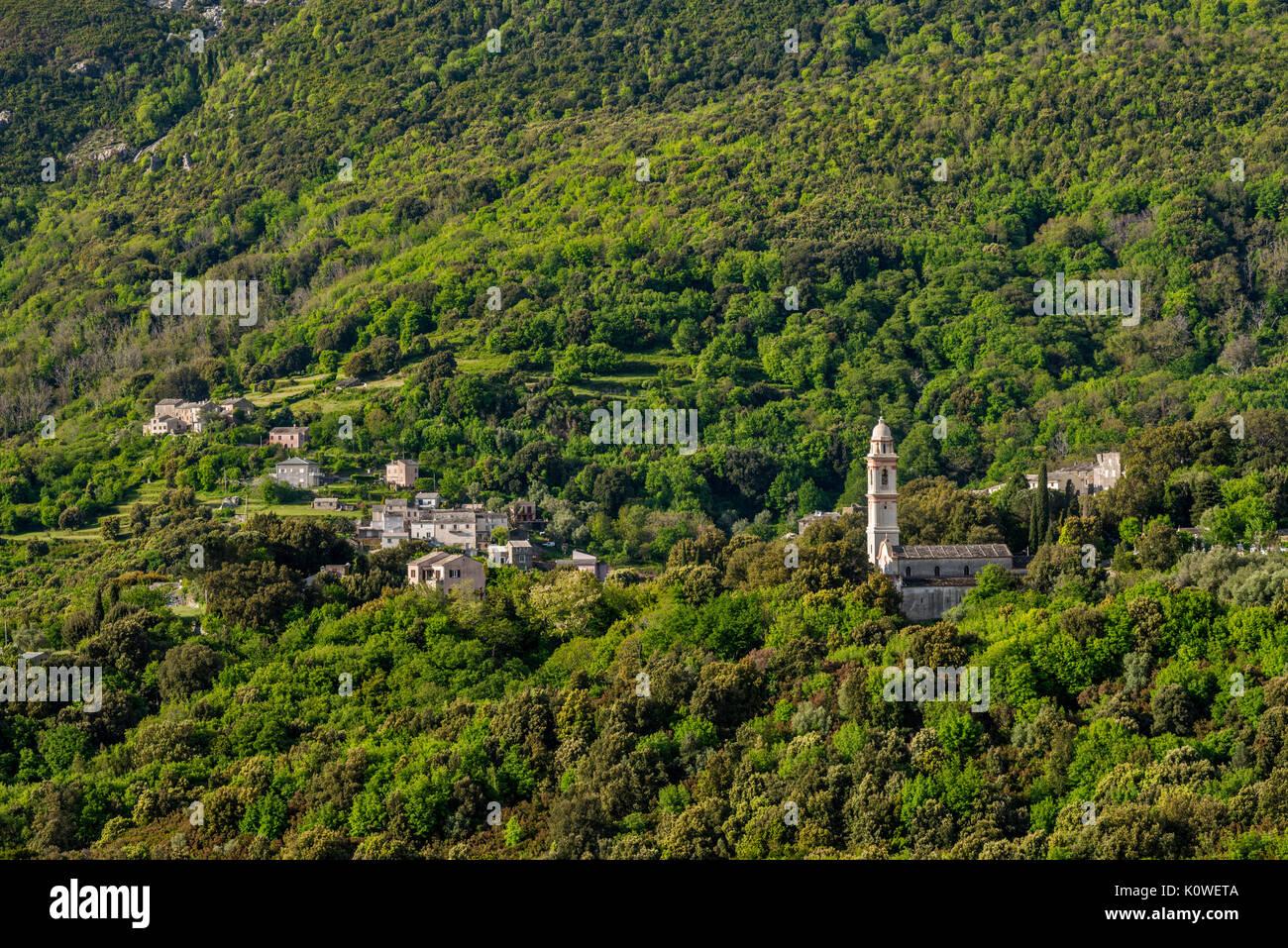 Pueblo en la ladera de la SISCO, Cap Corse, Haute-Corse departamento, Córcega, Francia Imagen De Stock