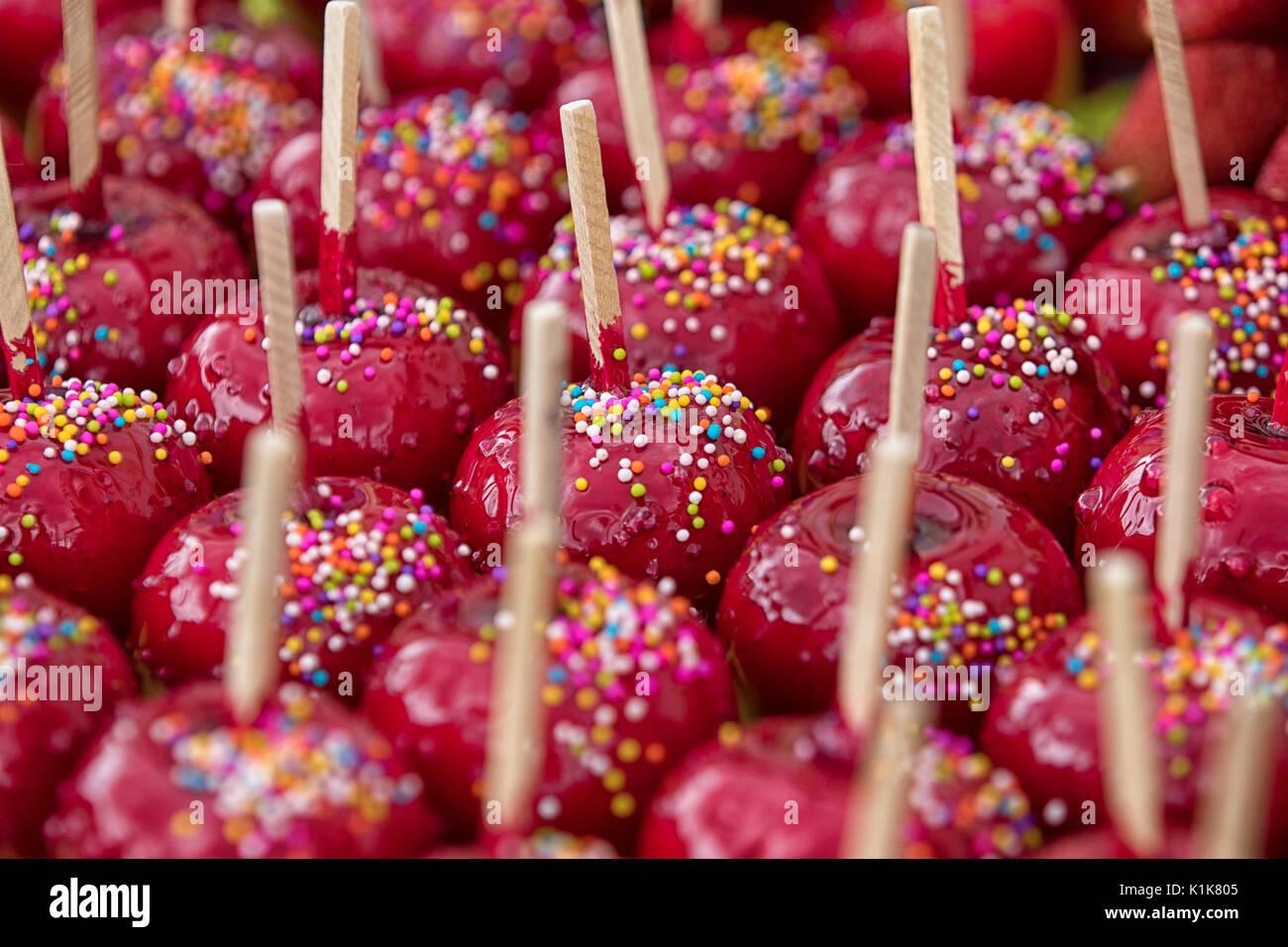 Las manzanas recubiertas de colorido glaseado de azúcar en Ecuador Imagen De Stock