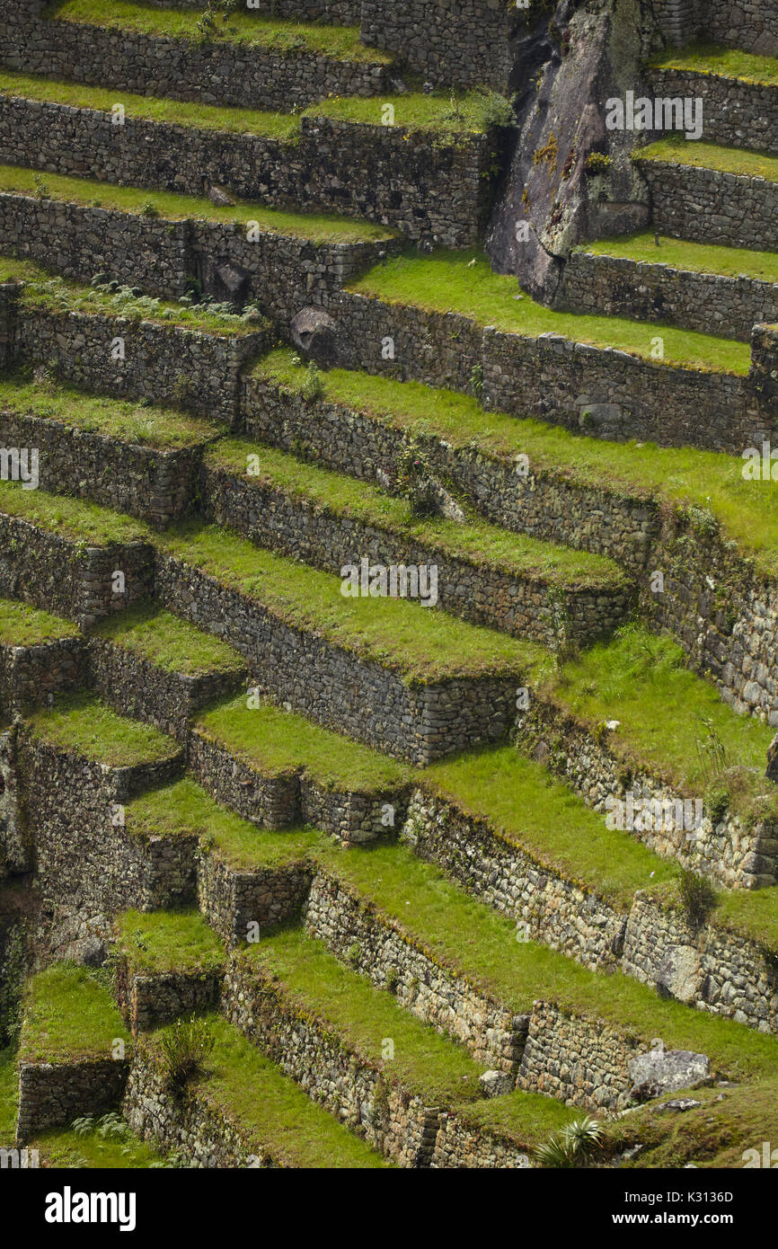 Terrazas De Cultivo Machu Picchu Patrimonio De La