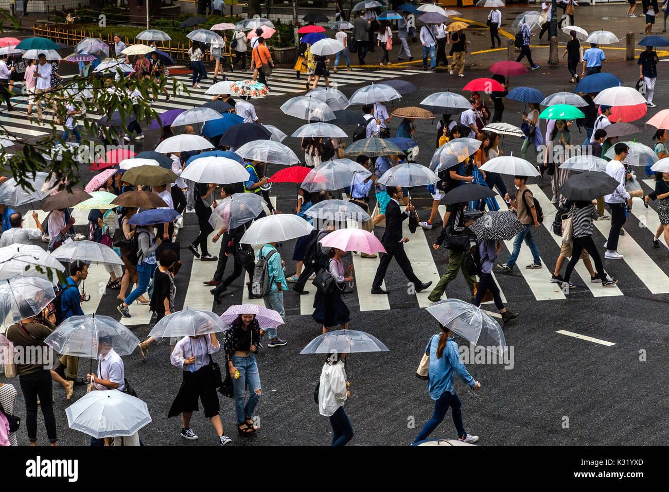 El cruce Shibuya Scramble, en promedio, la mitad de un millón de personas que pasan por el cruce Shibuya cada día y 3000 por ciclo de cruce, rondando los 4 Imagen De Stock