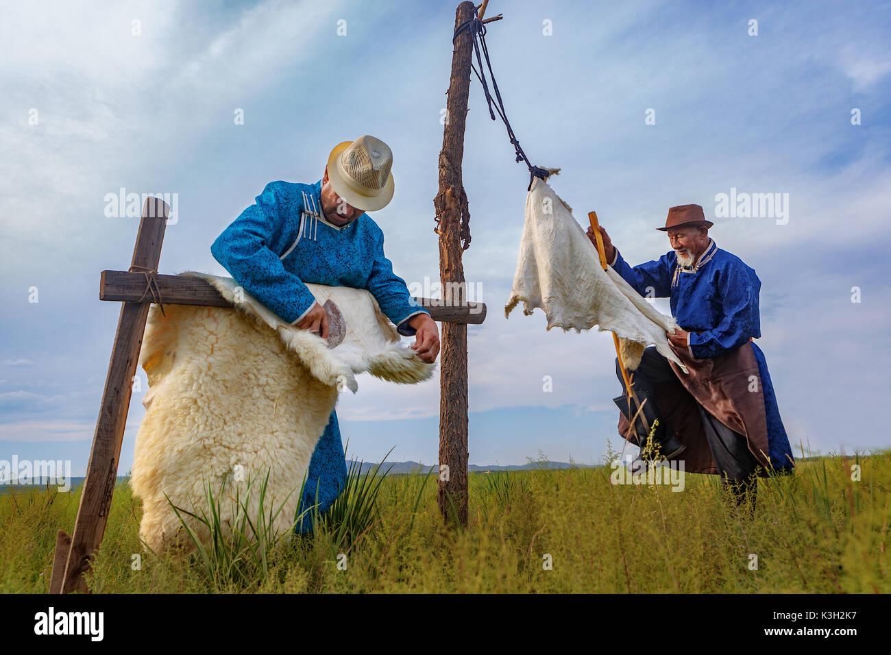 Mongolia interior, China-Julio 26, 2017: tradicionalmente vestidos viejos hombres mongol procesar las pieles de oveja en una forma tradicional para ulteriores trabajos en cuero. Imagen De Stock