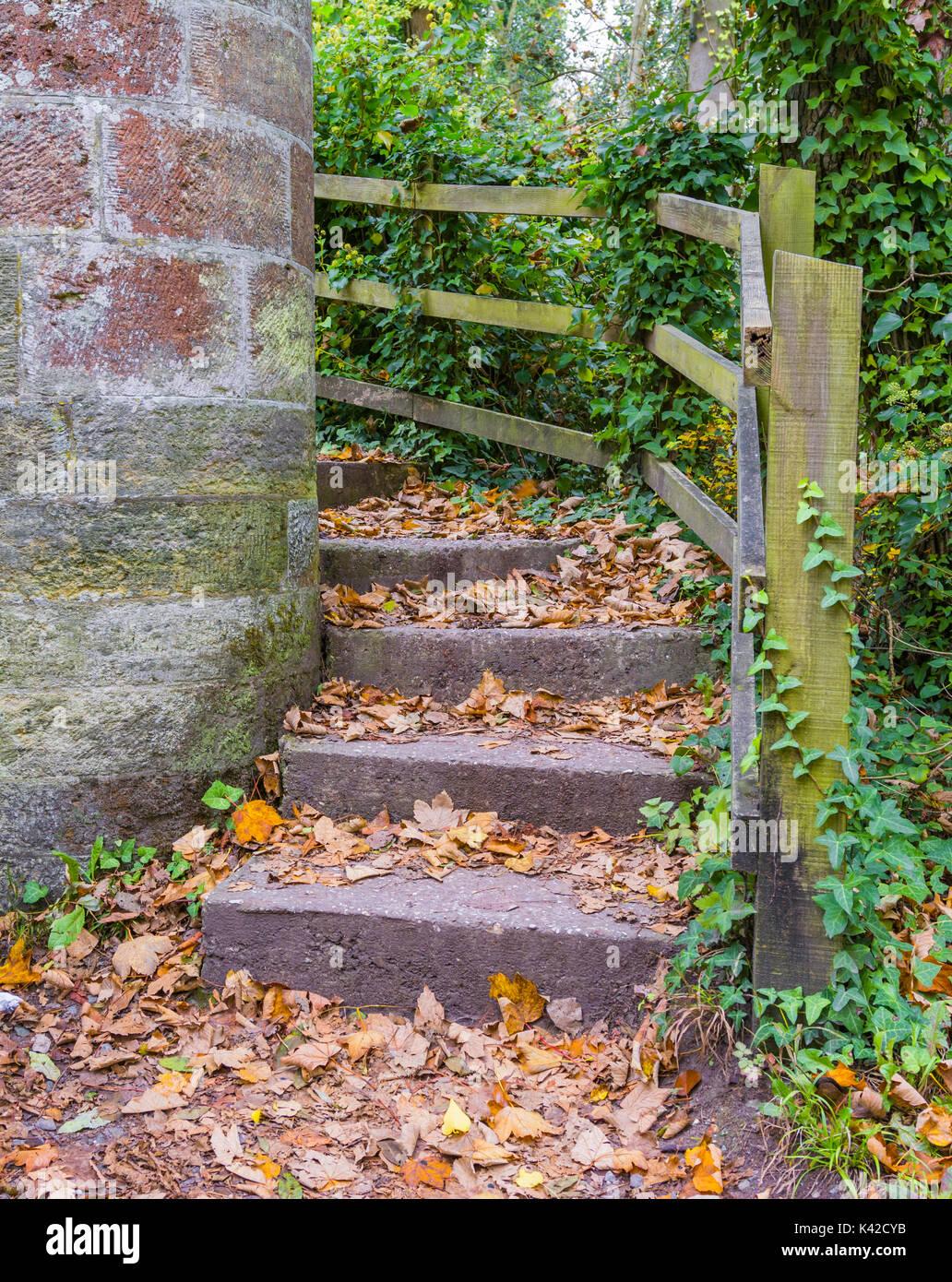 Deja en el suelo sobre una antigua escalera de piedra en el otoño en Arundel, West Sussex, Inglaterra, Reino Unido. La vista vertical. Concepto de otoño. Imagen De Stock