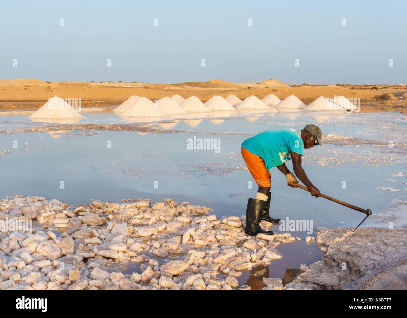 Cabo Verde SAL hombre Local cavando montones de sal de las salinas naturales en Salinas, justo en las afueras de Santa María, en la isla de Sal, Cabo Verde, África Imagen De Stock