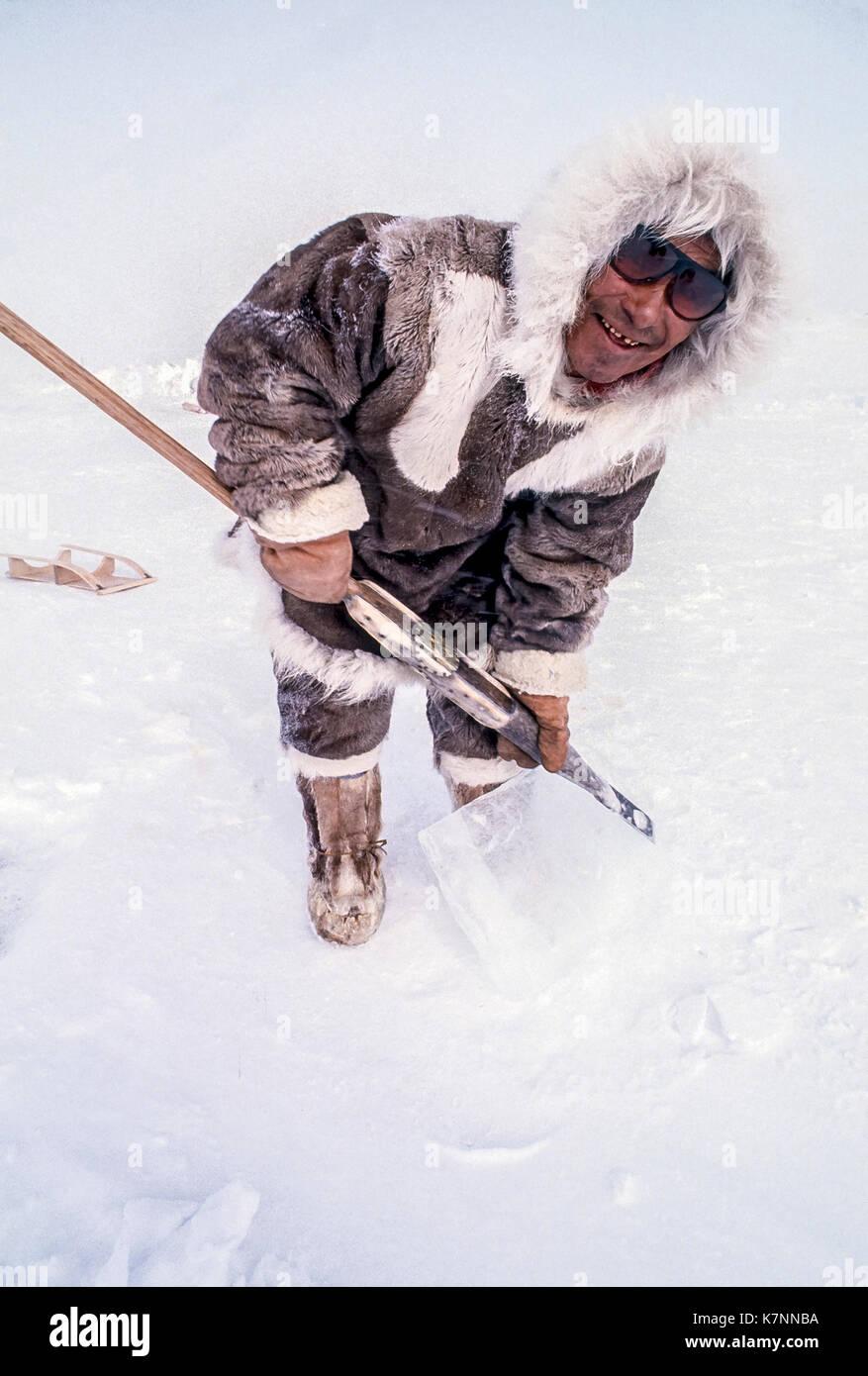 Hombre anciano inuit, a mediados de los 60s, vestidos con ropa tradicional de piel de caribú, plantea con la herramienta que se utiliza para cortar bloques de hielo para construir igloos. Imagen De Stock