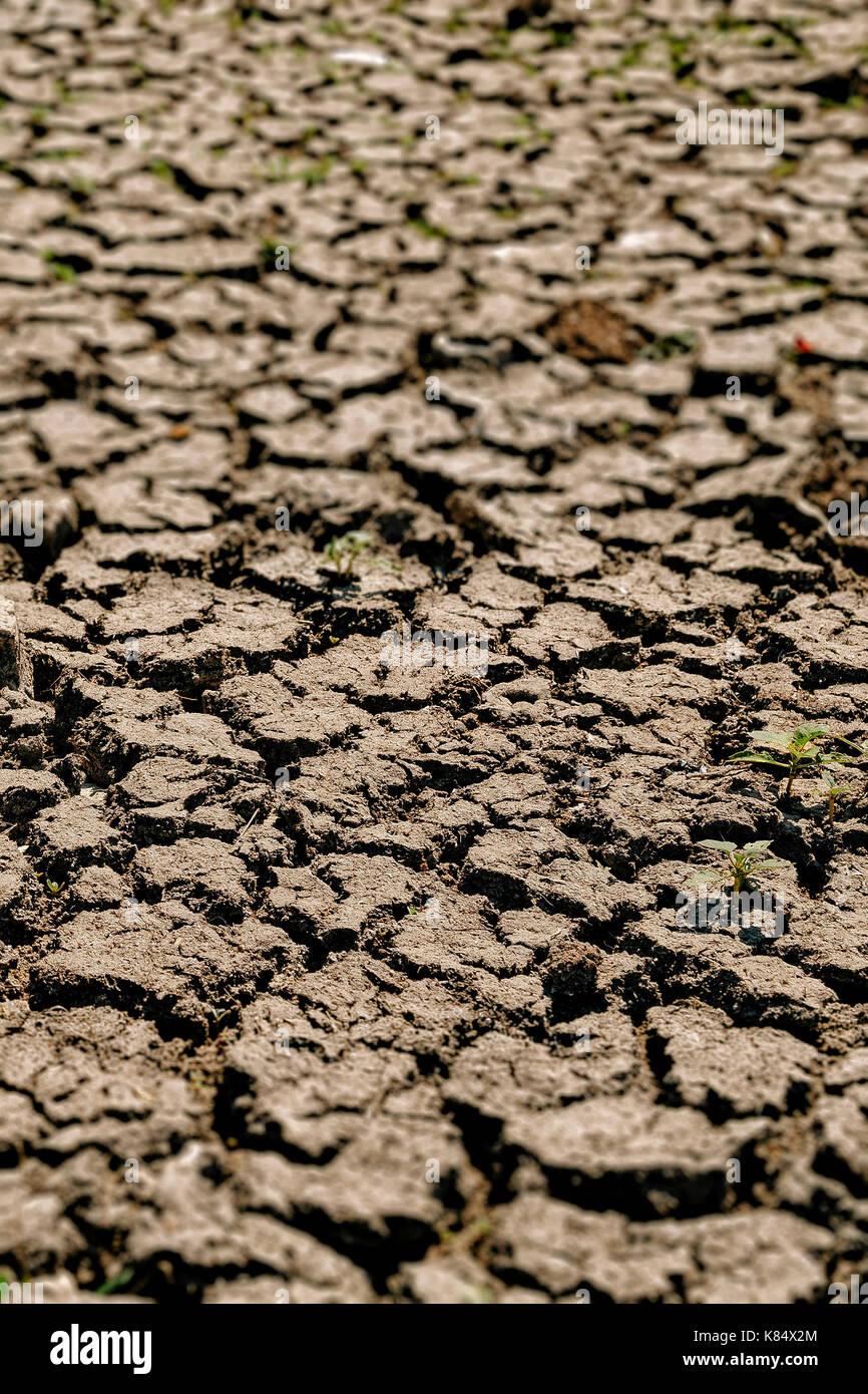 Grietas en la sequía afectó a la tierra Imagen De Stock