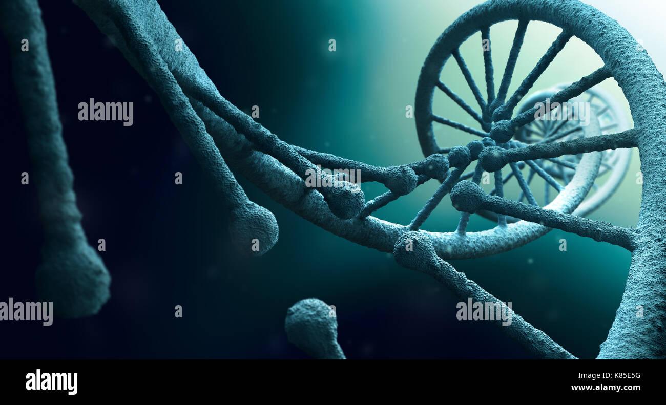 La estructura del ADN cerrar Foto de stock