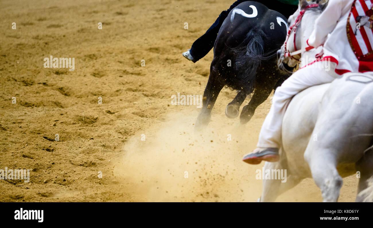 Detalles de las carreras de caballos en el hipódromo de caballos galopando piernas vía Imagen De Stock