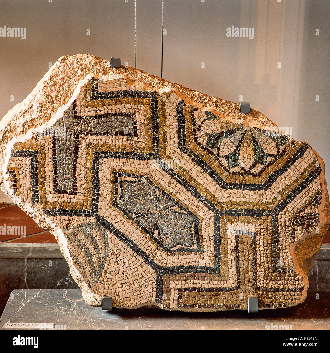 Italia Abruzos vasto Palazzo d'Avalos, museo arqueológico - Fragmento de edad imperial piso desde el casco Imagen De Stock
