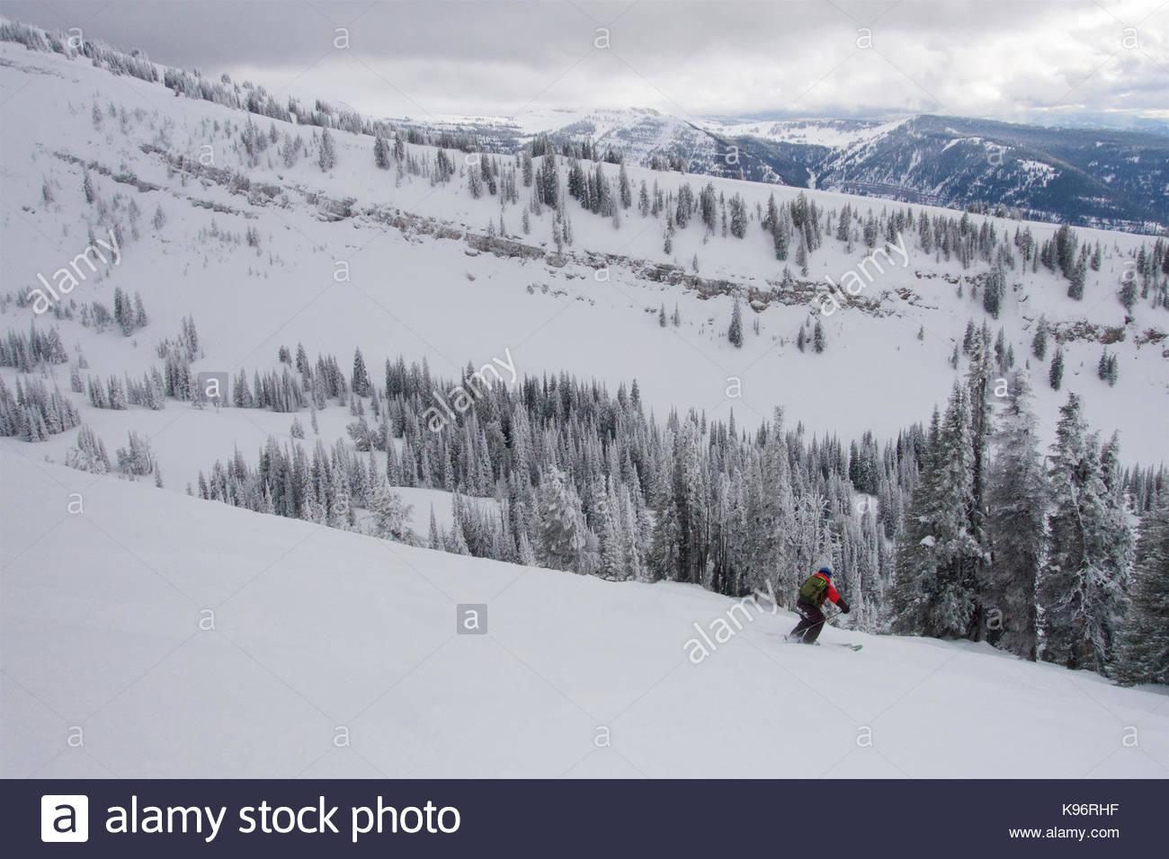 Un jovencito esquí cerca de escarcha cubiertas de árboles en las montañas en un día nublado. Imagen De Stock