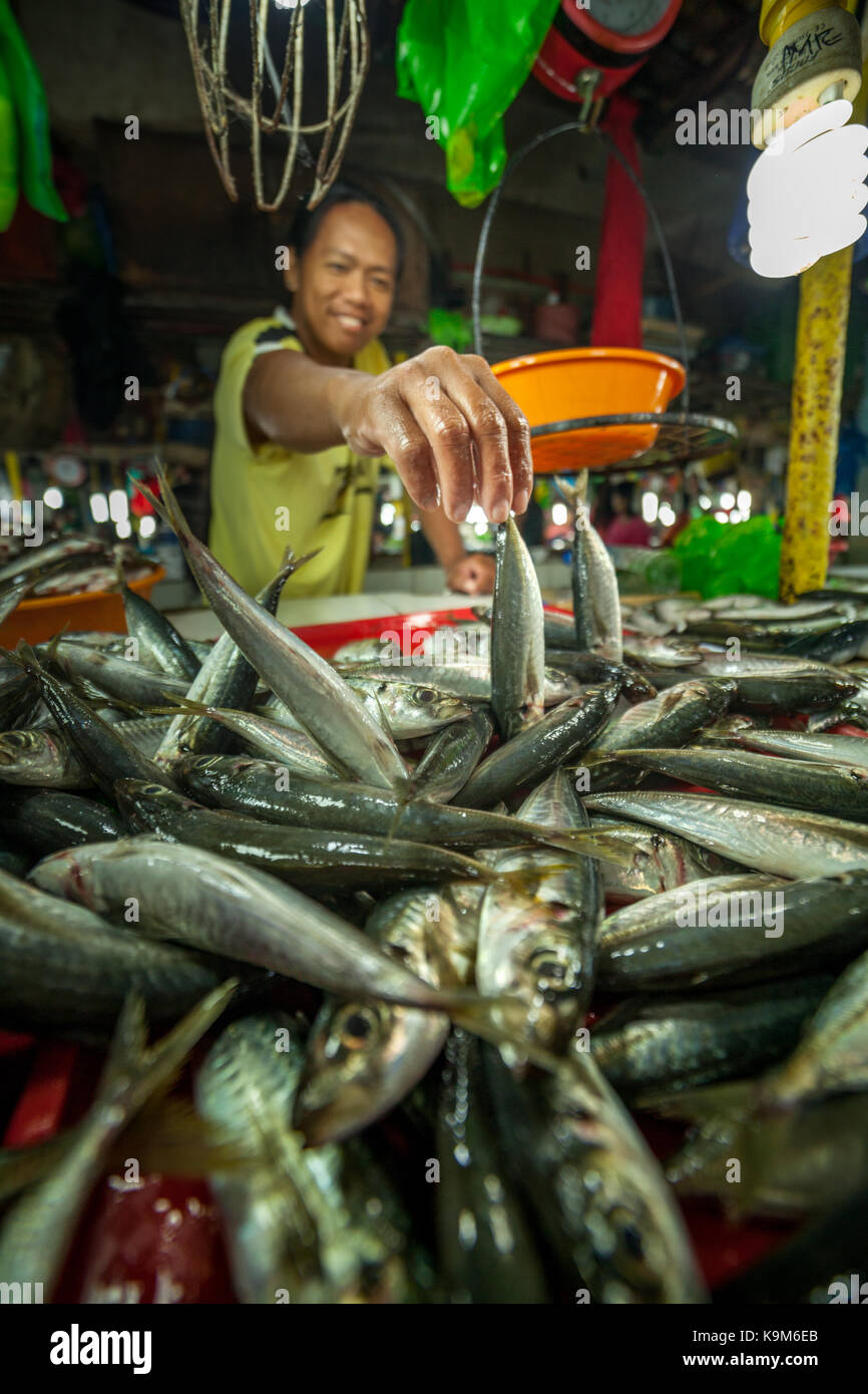Un hombre vende pescado fresco en el mercado mojado en Puerto Princesa, Palawan, Filipinas. Imagen De Stock
