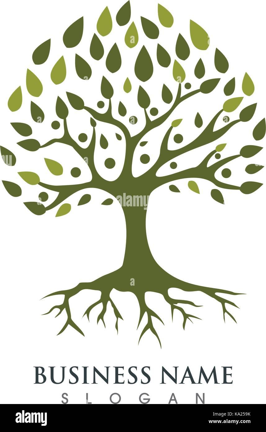 árbol Familiar Plantilla Logo Ilustración Vectorial Ilustración Del