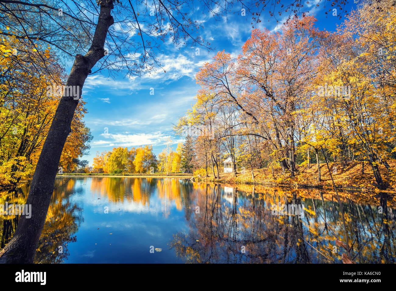 Otoño soleado en el parque sobre el lago Imagen De Stock