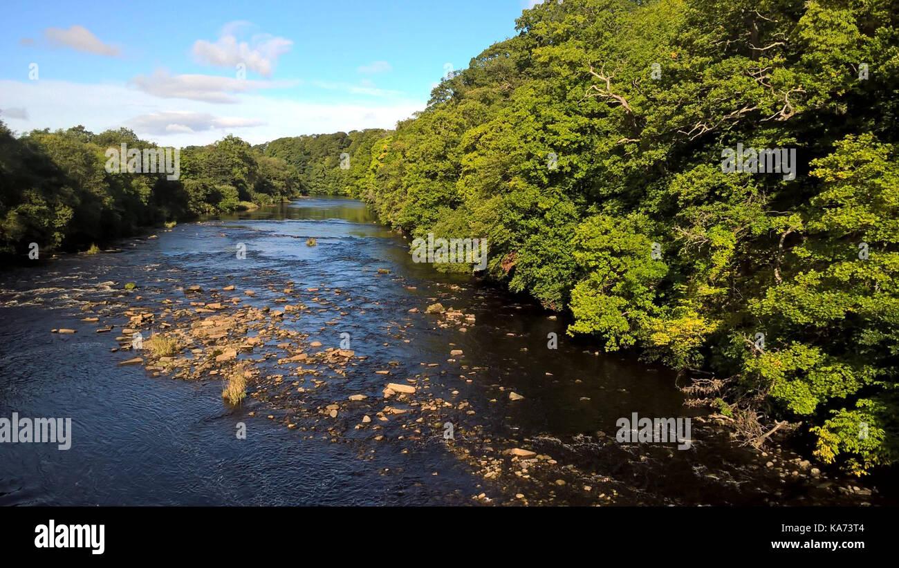 Río Tees Foto de stock