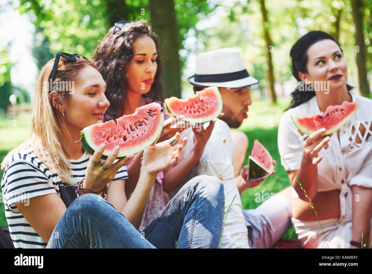Grupo de amigos tener pic-nic en un parque en un día soleado - gente colgando fuera, divirtiéndose mientras cocinando Foto de stock