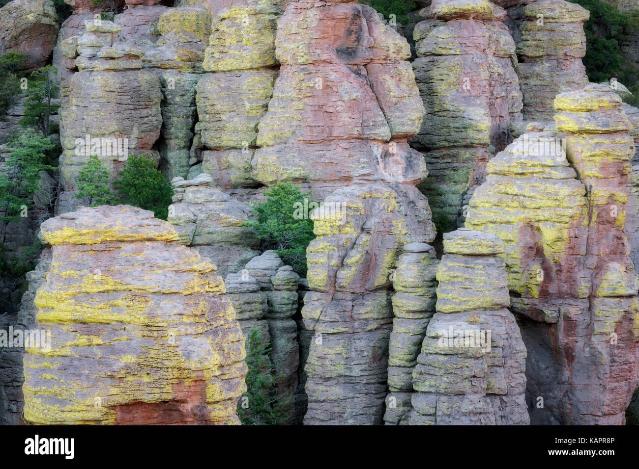 Innumerables formaciones de rocas cubiertas de líquenes y hoodoos se encuentran a lo largo de Arizona se Chiricahua Foto de stock