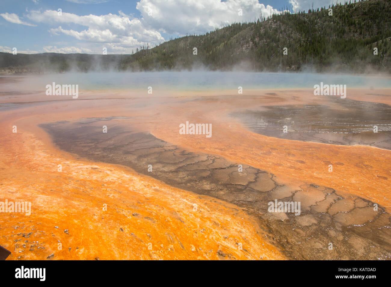 El agua caliente se ejecuta fuera de Grand Prismatic Spring, el parque nacional Yellowstone, Wyoming, Estados Unidos. Foto de stock