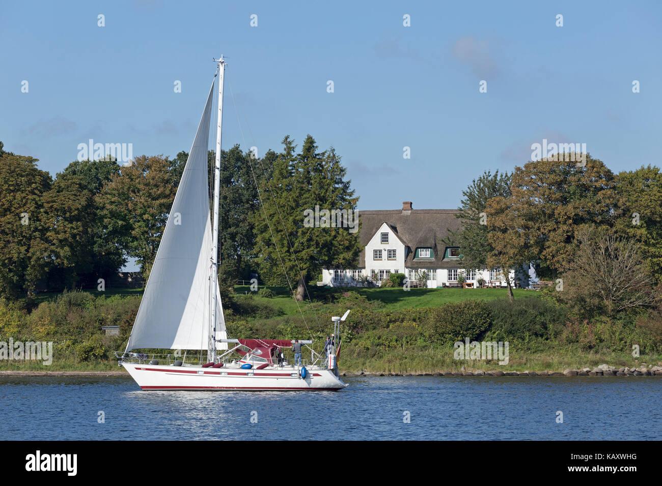 Velero, Rabelsund, Schlei, Schleswig-Holstein, Alemania Imagen De Stock