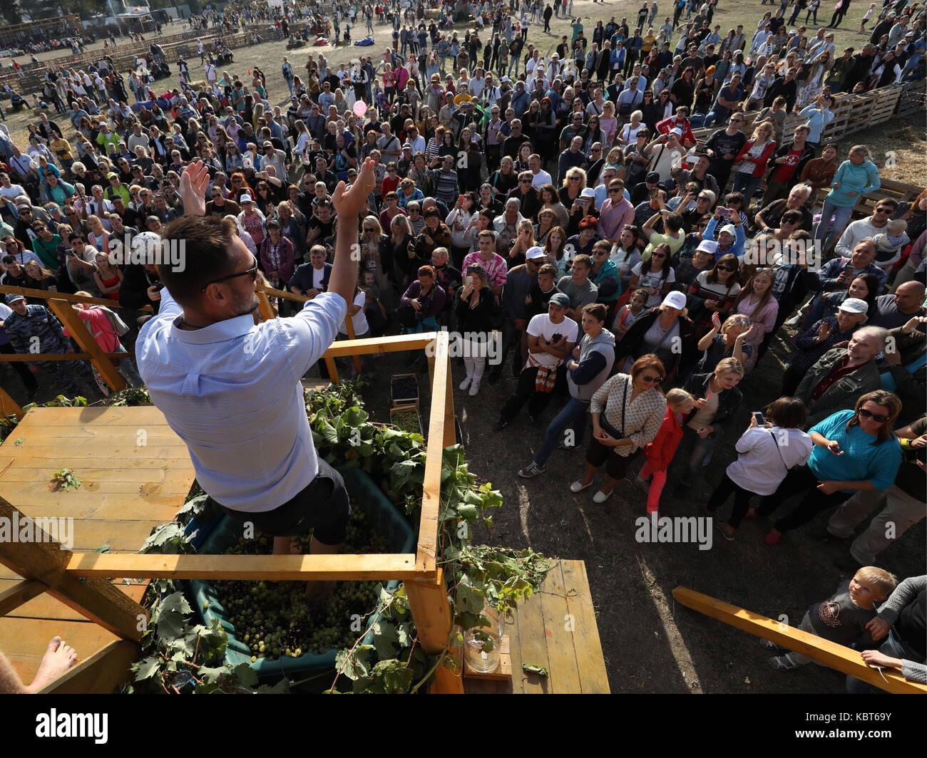 Crimea, Rusia. 30 sep, 2017. Un hombre winefest stomps uvas en la vendimia y elaboración del vino en el festival de zolotaya balka bodega en la ciudad de balaklava. Crédito: Sergei malgavko/tass/alamy live news Foto de stock