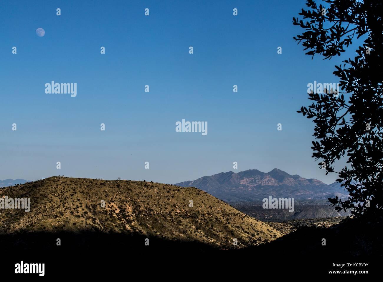 Expedición con multas científicos y conservacionistas. alrededor de 50 personas (mex y usa) de las distintas Imagen De Stock
