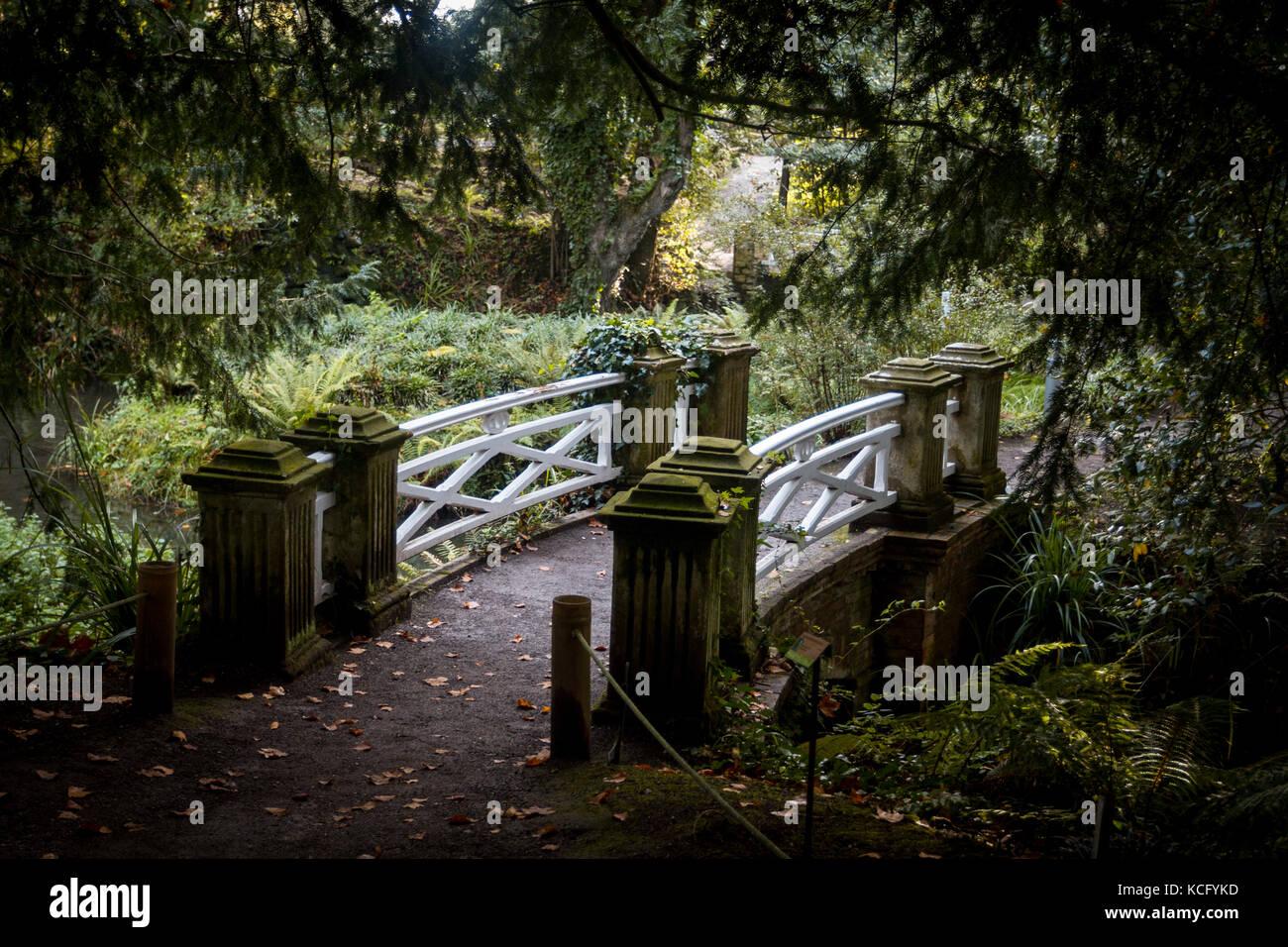 Jardin Botanico Gijon Asturias Espana Foto Imagen De Stock