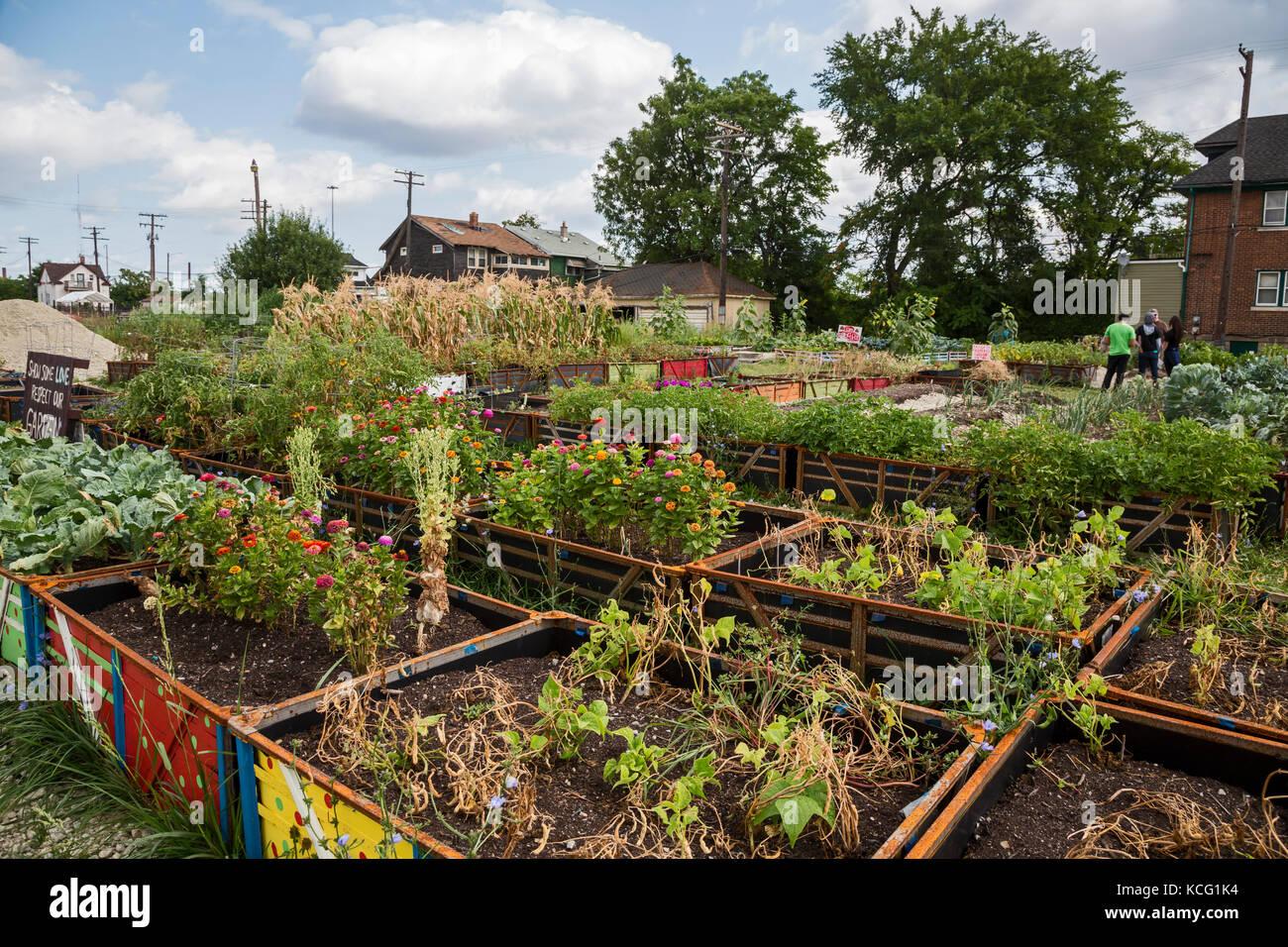 Detroit michigan un jard n comunitario en un vecindario for Jardin etroit