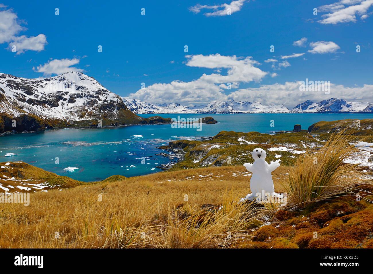 Las montañas cubiertas de nieve con agua azul en las islas Georgias del Sur y Sandwich del Sur Imagen De Stock