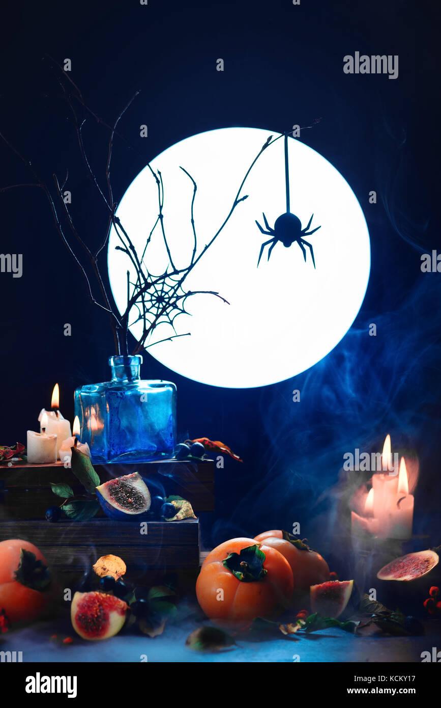 Araña en una web de silueta en luz de la luna llena. halloween conceptual bodegón con humo, caqui, ramas Imagen De Stock
